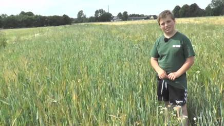 TV-Ishøj: Landmand som11-årig