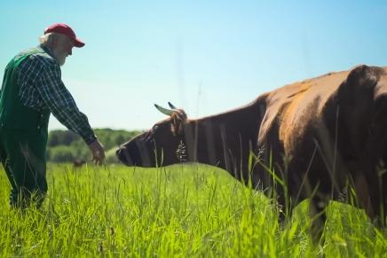En film om bonden, universet ogbureaukratiet
