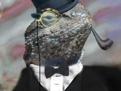 Hackergruppen Lizard Squad bag Facebook angreb
